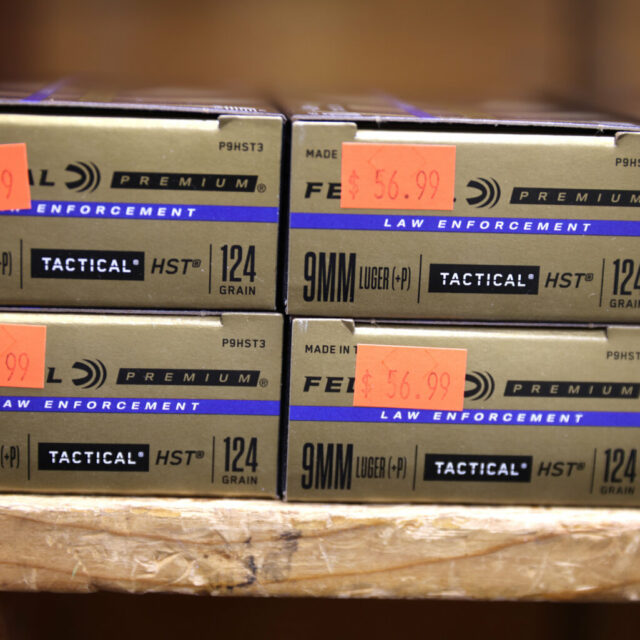Federal background checks on ammunition sales pushed by Democrats
