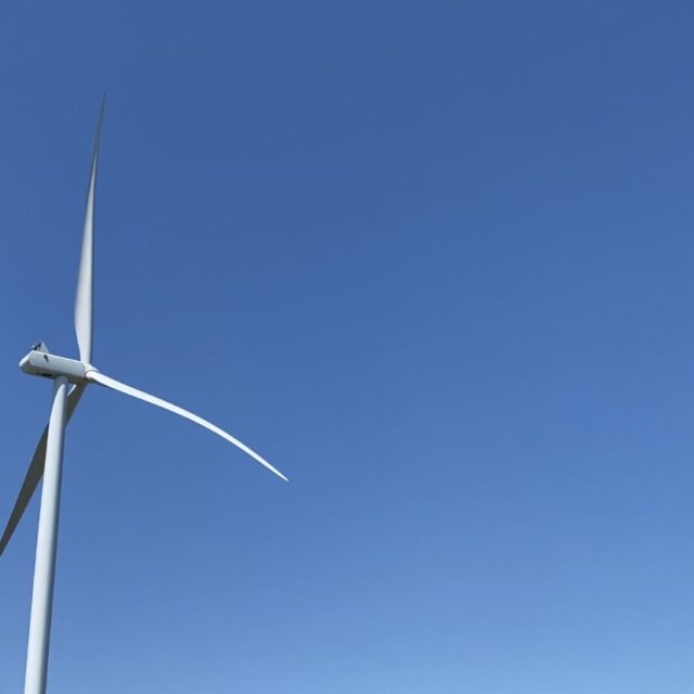 Missouri's largest wind farm isn't running at night for fear of killing endangered animals